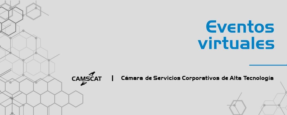 Desarrollo de webinars CamSCAT 2021