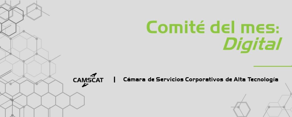 Equipo destacado del mes: Comité Digital